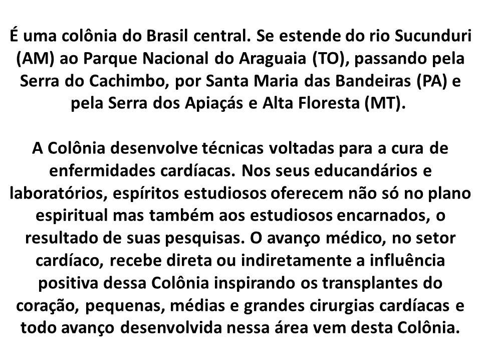 É uma colônia do Brasil central