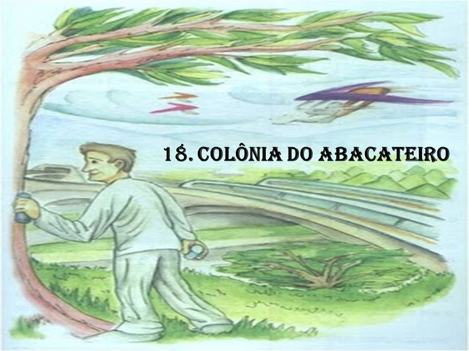 18. COLÔNIA DO ABACATEIRO