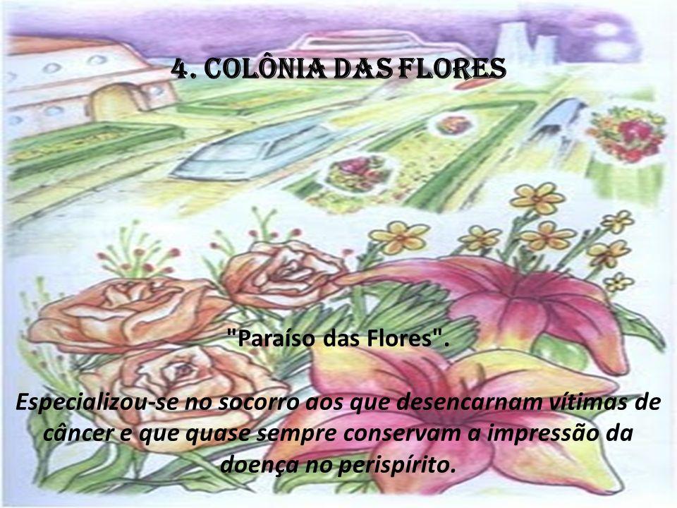 4. COLÔNIA DAS FLORES Paraíso das Flores .