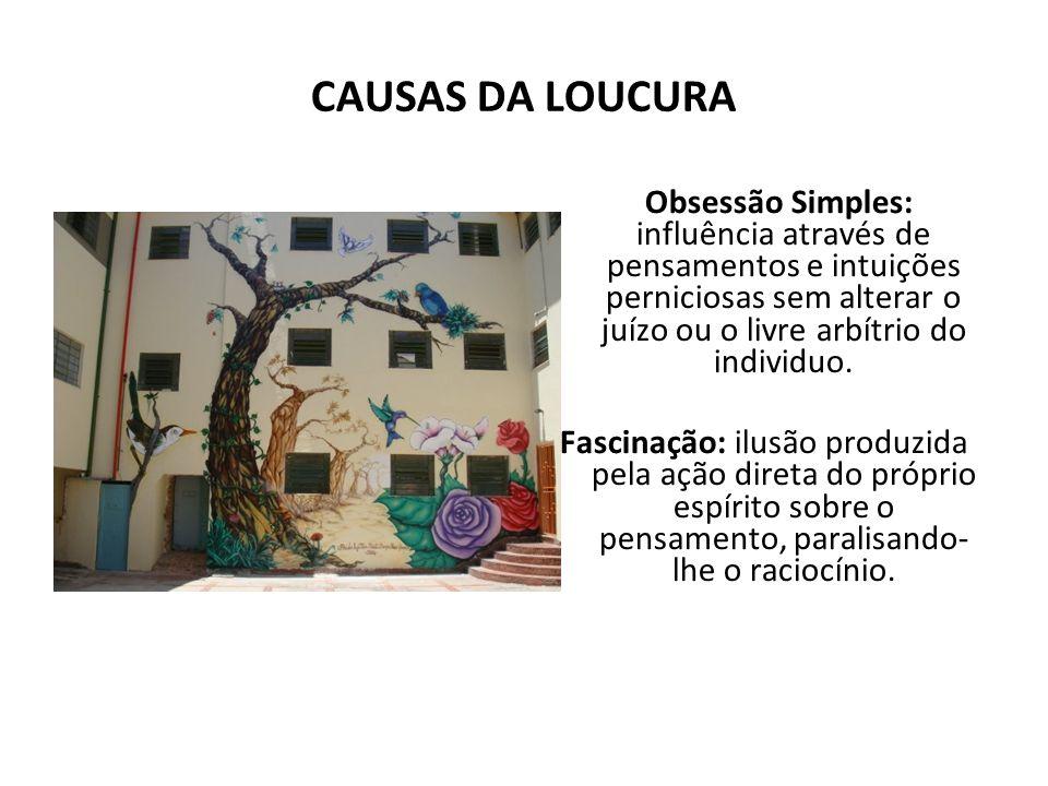 CAUSAS DA LOUCURA