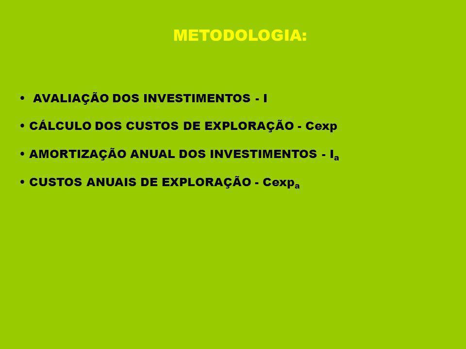 METODOLOGIA: AVALIAÇÃO DOS INVESTIMENTOS - I