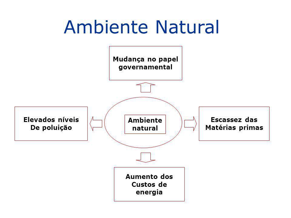 Ambiente Natural Mudança no papel governamental Mudança no papel