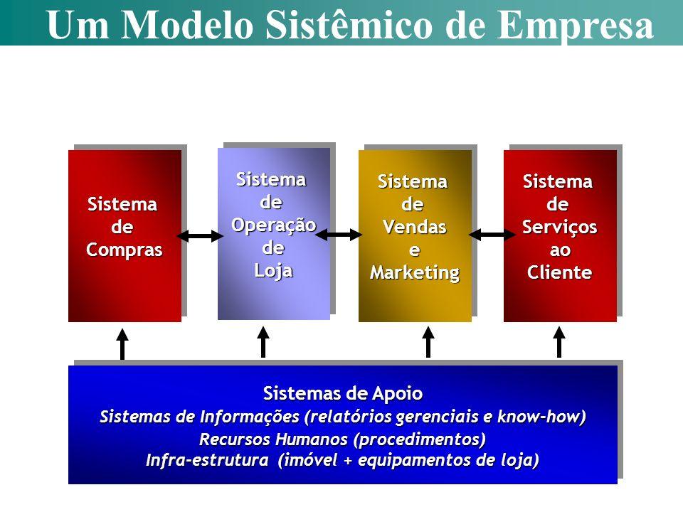Um Modelo Sistêmico de Empresa
