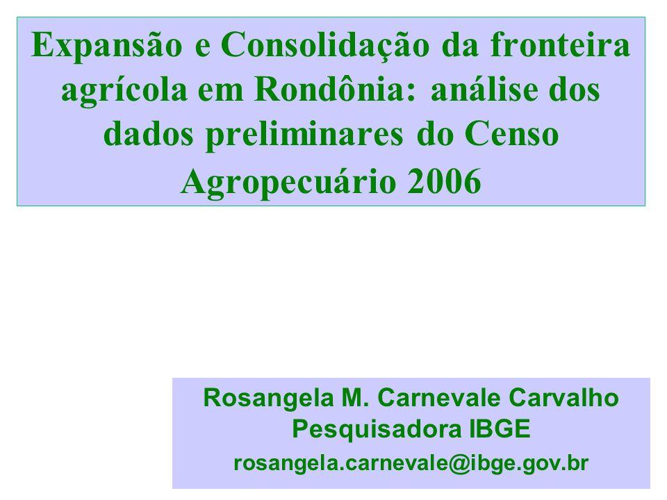 Rosangela M. Carnevale Carvalho Pesquisadora IBGE