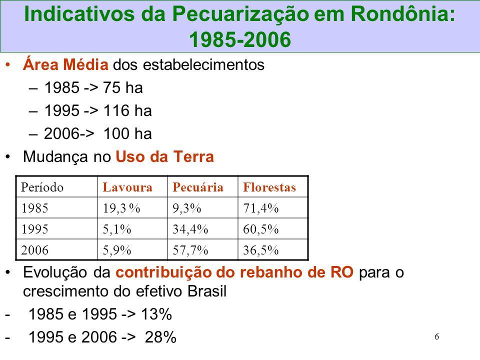 Indicativos da Pecuarização em Rondônia: 1985-2006