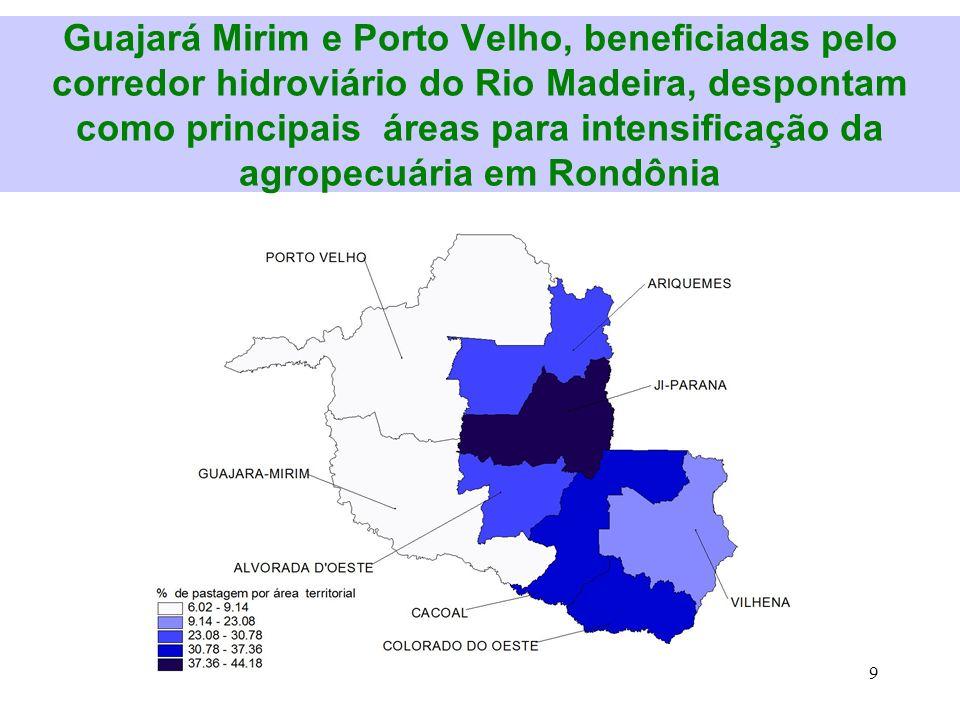 Guajará Mirim e Porto Velho, beneficiadas pelo corredor hidroviário do Rio Madeira, despontam como principais áreas para intensificação da agropecuária em Rondônia