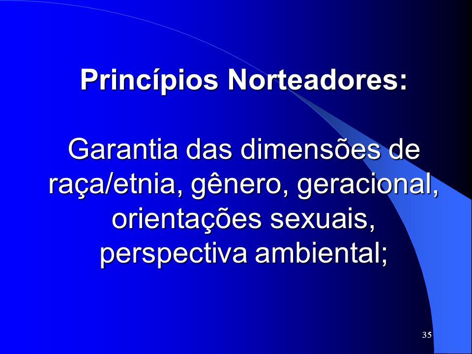 Princípios Norteadores: Garantia das dimensões de raça/etnia, gênero, geracional, orientações sexuais, perspectiva ambiental;