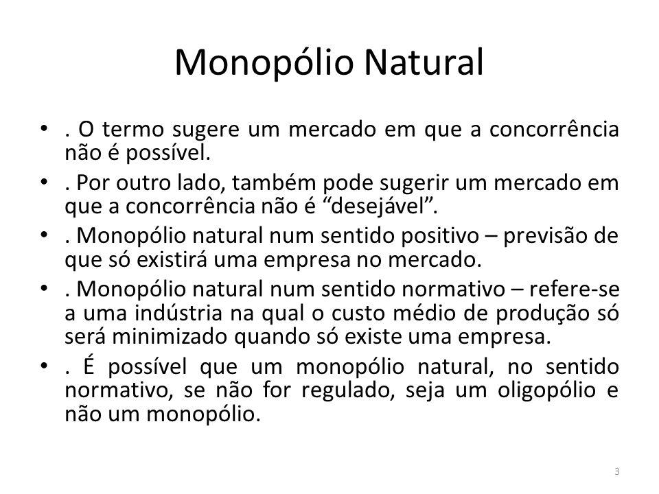 Monopólio Natural . O termo sugere um mercado em que a concorrência não é possível.