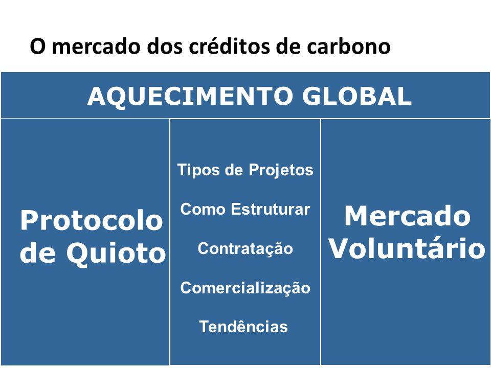 O mercado dos créditos de carbono