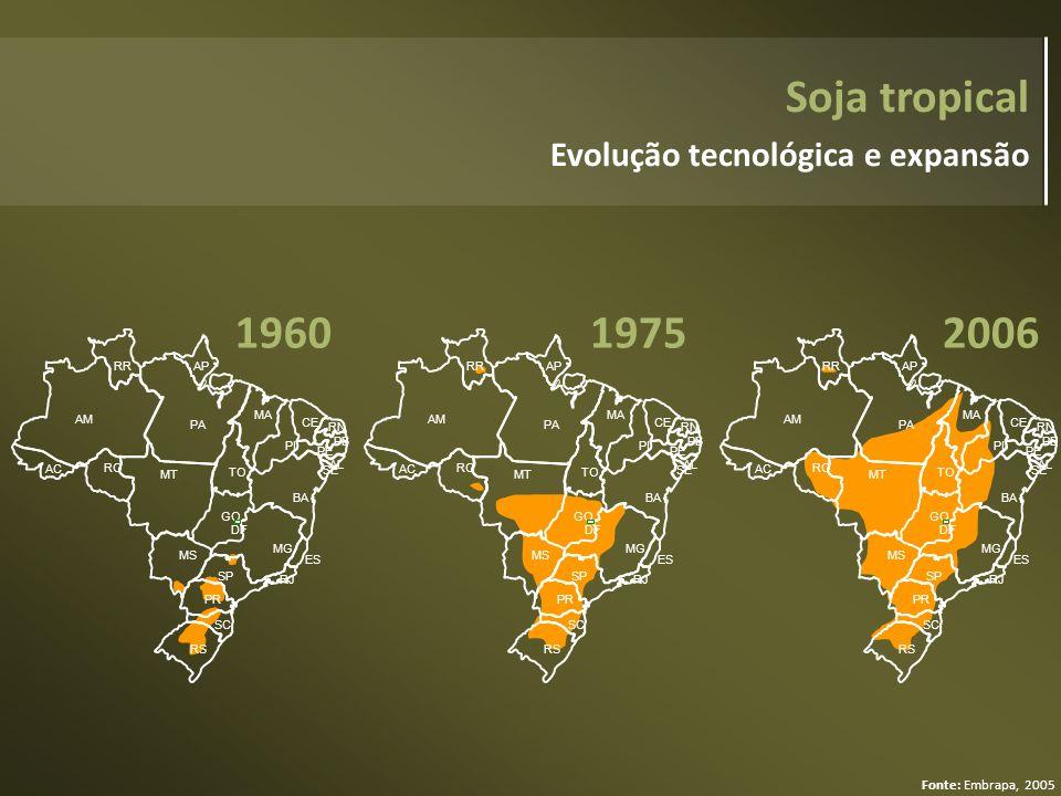 Soja tropical 1960 1975 2006 Evolução tecnológica e expansão