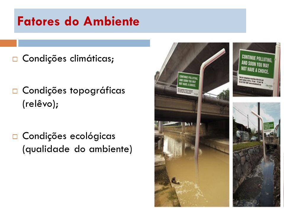 Fatores do Ambiente Condições climáticas;