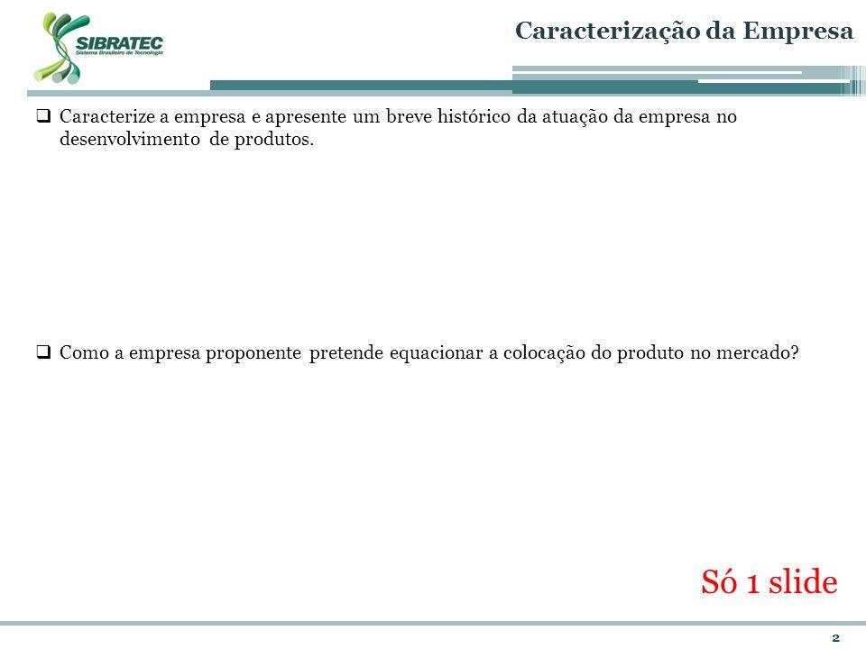Só 1 slide Caracterização da Empresa