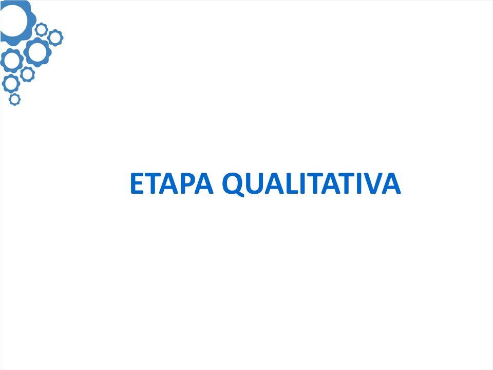 ETAPA QUALITATIVA