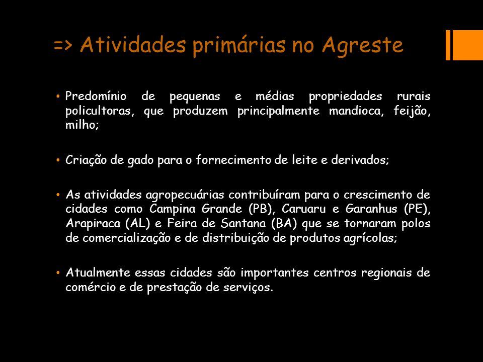 => Atividades primárias no Agreste