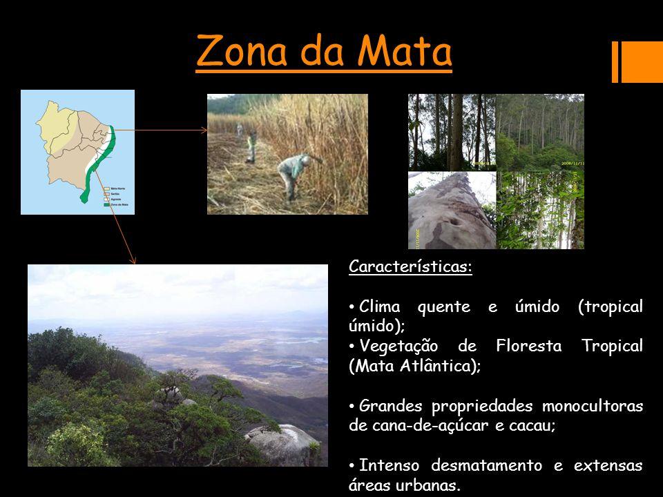 Zona da Mata Características: Clima quente e úmido (tropical úmido);