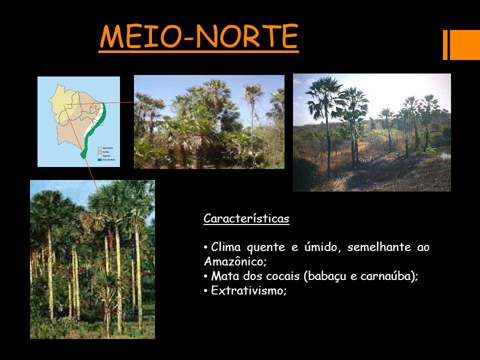 MEIO-NORTE Características