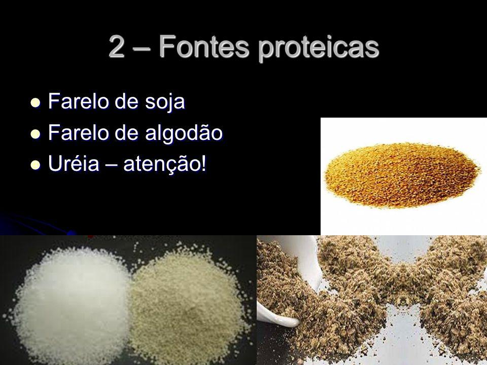 2 – Fontes proteicas Farelo de soja Farelo de algodão Uréia – atenção!
