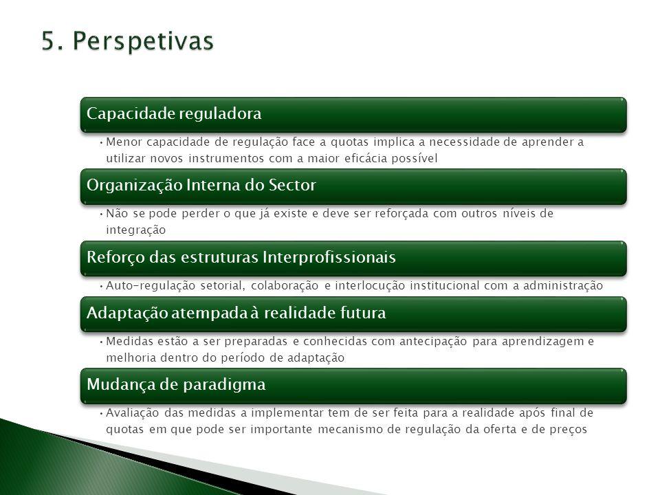 5. Perspetivas Capacidade reguladora Organização Interna do Sector