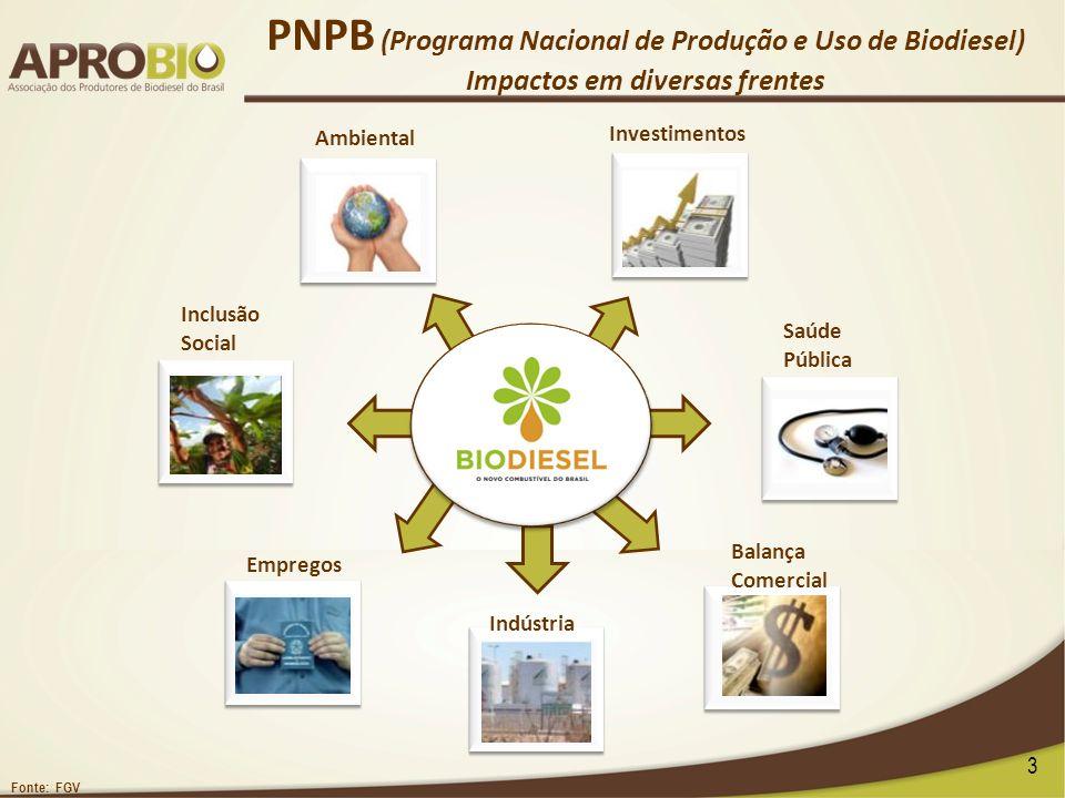 PNPB (Programa Nacional de Produção e Uso de Biodiesel) Impactos em diversas frentes