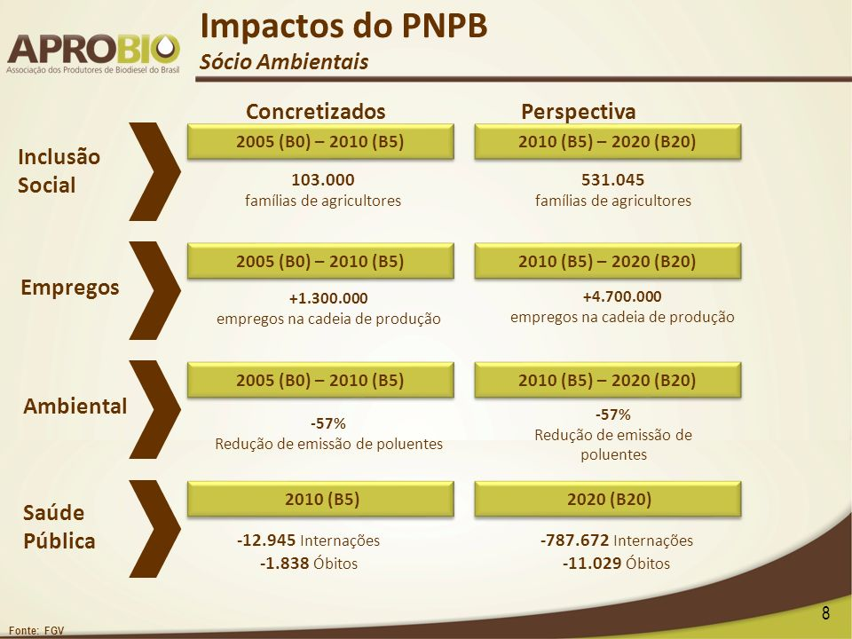 Impactos do PNPB Sócio Ambientais