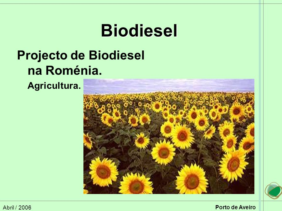 Biodiesel Projecto de Biodiesel na Roménia. Agricultura. Abril / 2006