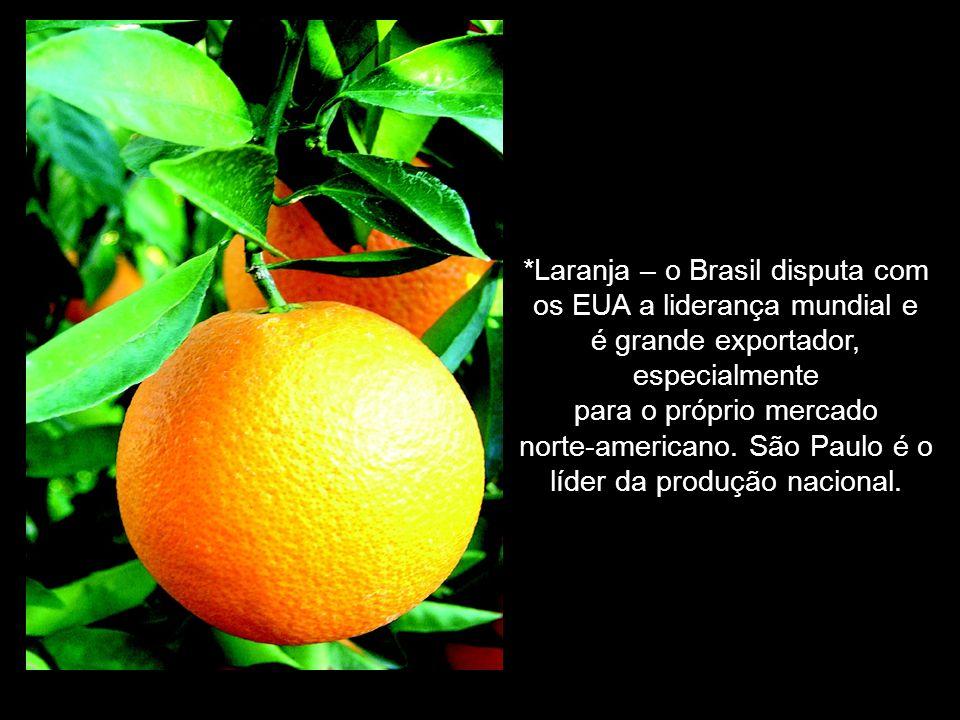 *Laranja – o Brasil disputa com os EUA a liderança mundial e