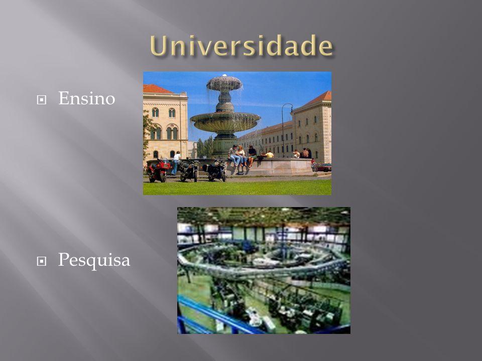 Universidade Ensino Pesquisa