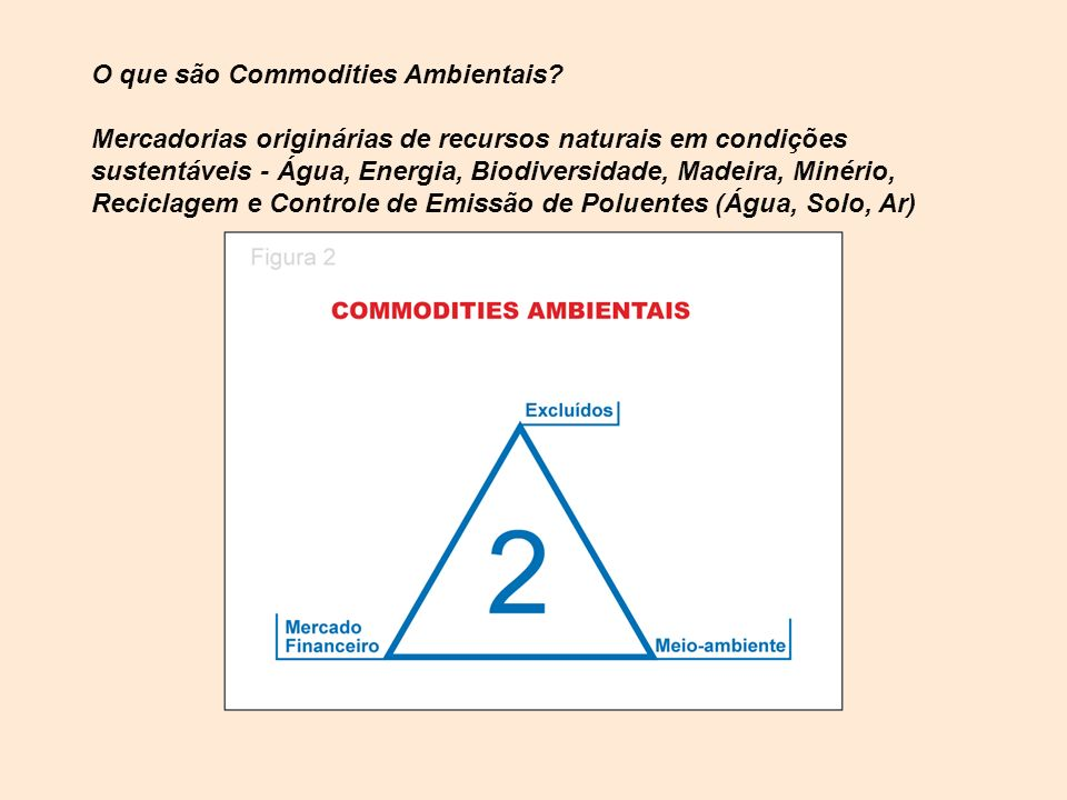 O que são Commodities Ambientais
