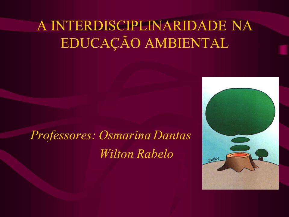 A INTERDISCIPLINARIDADE NA EDUCAÇÃO AMBIENTAL