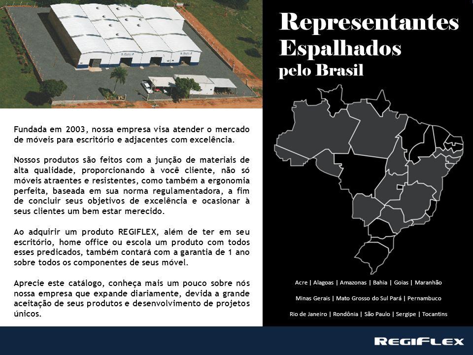 Representantes Espalhados pelo Brasil