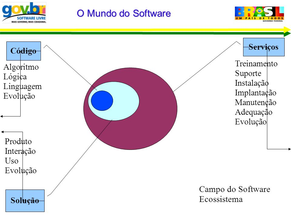 O Mundo do Software Campo do Software Ecossistema Serviços Código