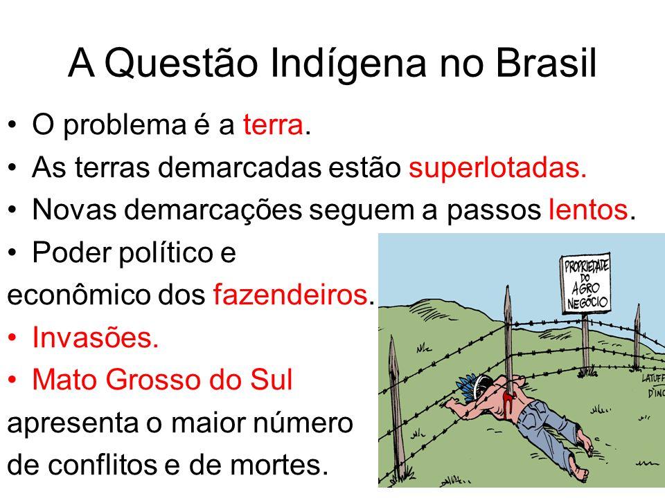 A Questão Indígena no Brasil