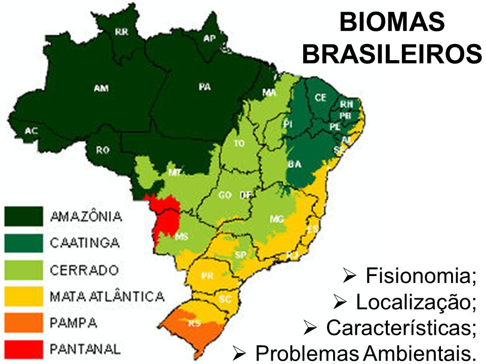 BIOMAS BRASILEIROS Fisionomia; Localização; Características;