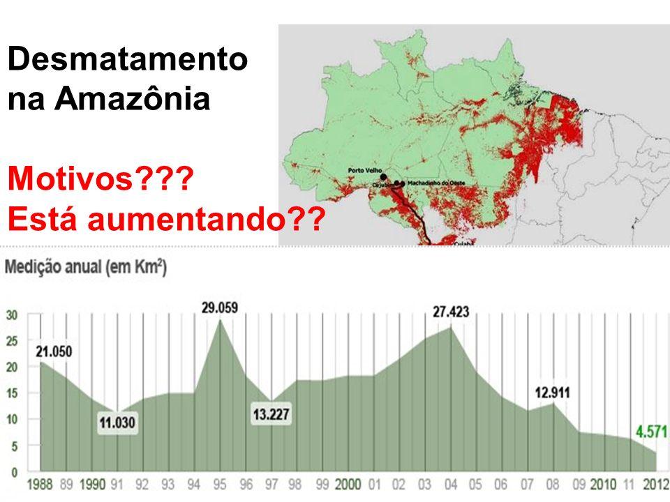Desmatamento na Amazônia Motivos Está aumentando