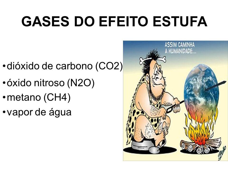 GASES DO EFEITO ESTUFA dióxido de carbono (CO2) óxido nitroso (N2O)