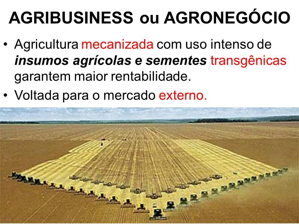 AGRIBUSINESS ou AGRONEGÓCIO