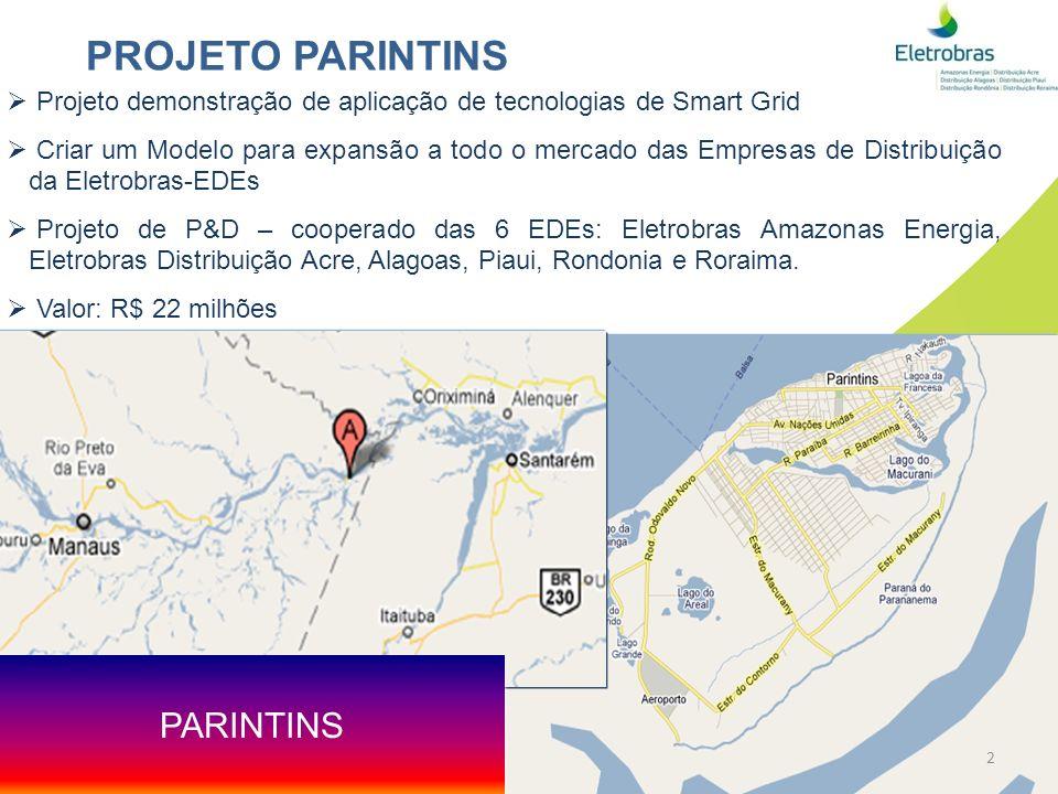 PROJETO PARINTINS PARINTINS