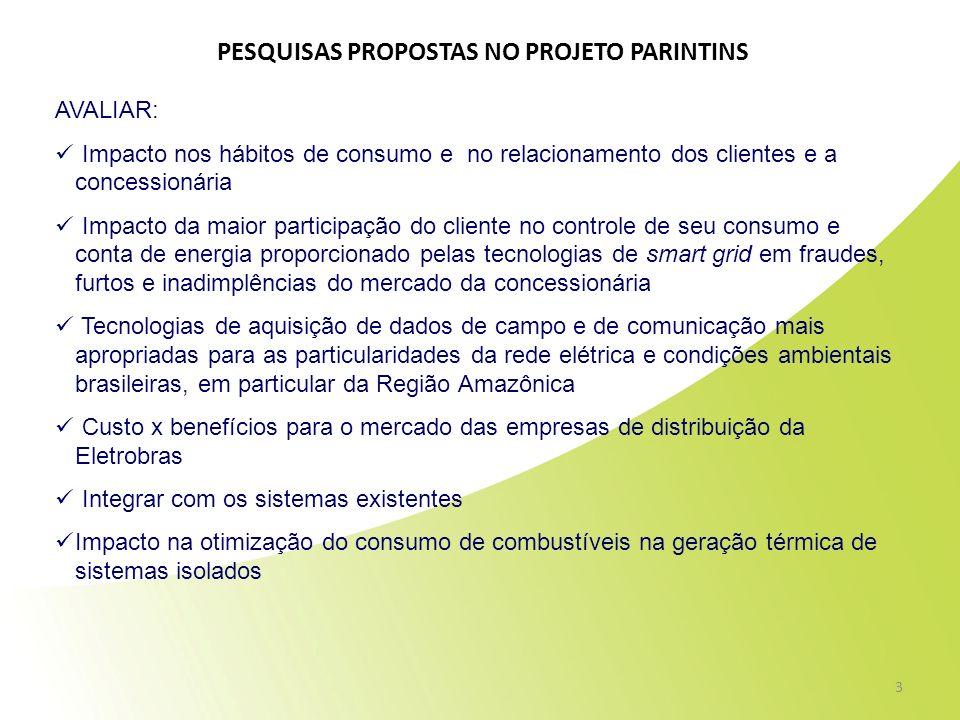PESQUISAS PROPOSTAS NO PROJETO PARINTINS