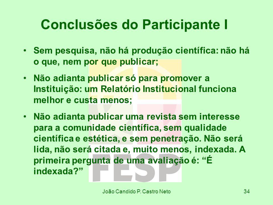 Conclusões do Participante I