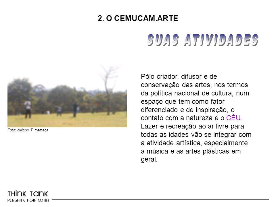 SUAS ATIVIDADES 2. O CEMUCAM.ARTE