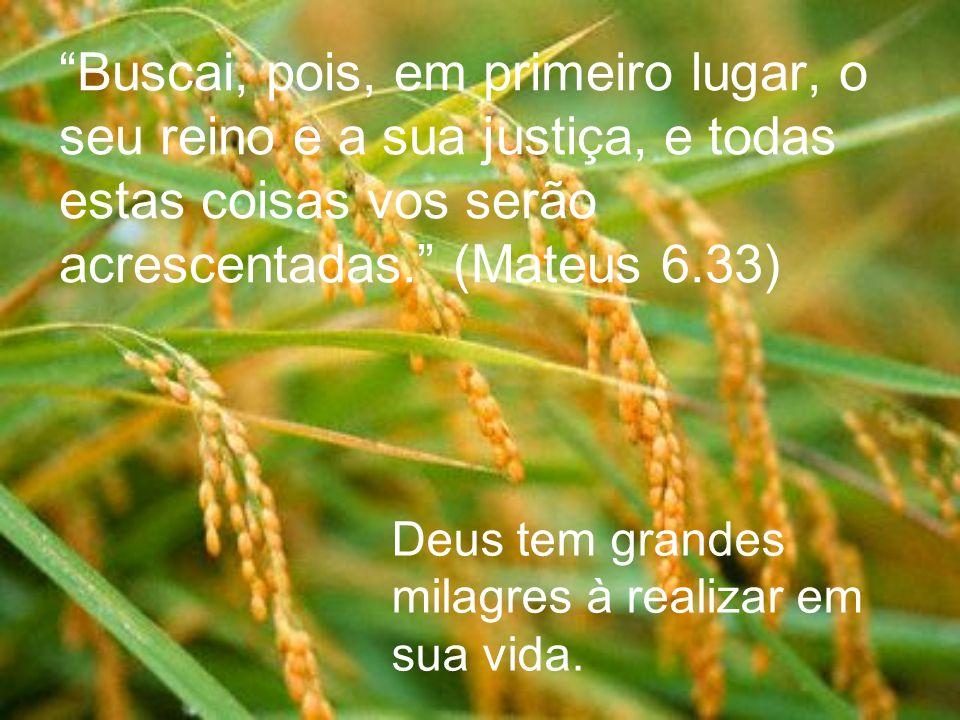 Buscai, pois, em primeiro lugar, o seu reino e a sua justiça, e todas estas coisas vos serão acrescentadas. (Mateus 6.33)