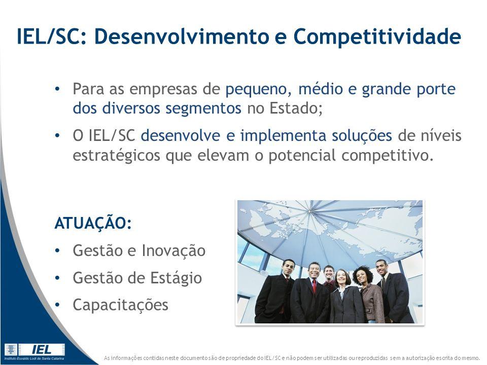 IEL/SC: Desenvolvimento e Competitividade
