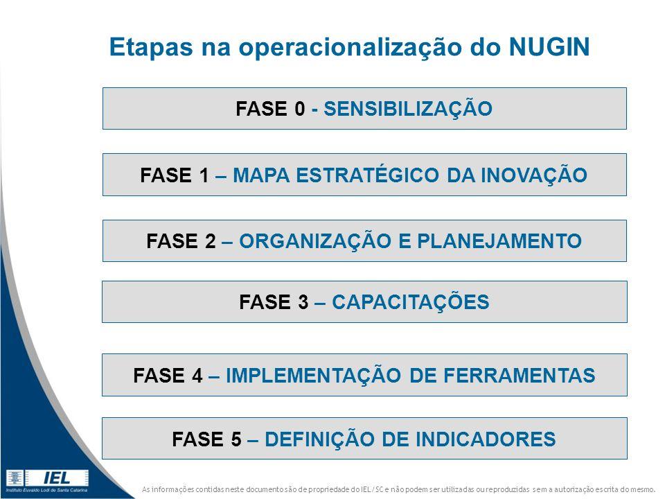 Etapas na operacionalização do NUGIN