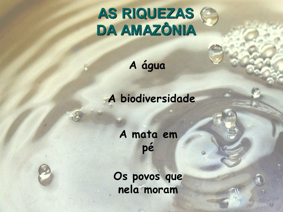 AS RIQUEZAS DA AMAZÔNIA