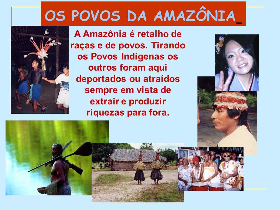 OS POVOS DA AMAZÔNIA
