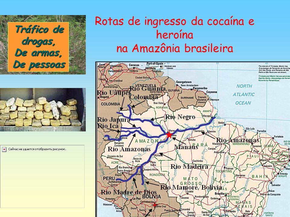 Rotas de ingresso da cocaína e heroína na Amazônia brasileira