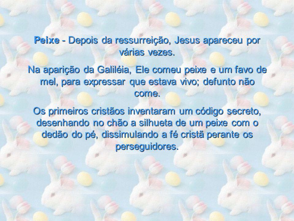 Peixe - Depois da ressurreição, Jesus apareceu por várias vezes.