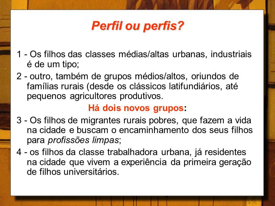 Perfil ou perfis 1 - Os filhos das classes médias/altas urbanas, industriais é de um tipo;