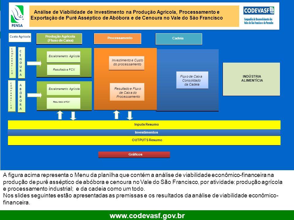 Análise de Viabilidade de Investimento na Produção Agrícola, Processamento e