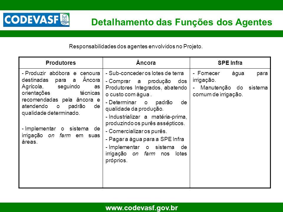 Responsabilidades dos agentes envolvidos no Projeto.